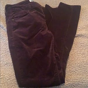 dark purple velvet jeans